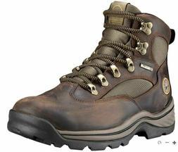 Timberland Men's 15130 Chocurua Trail GTX Boot,Brown/Green,9